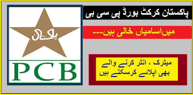 PCB Jobs 2020 | Pakistan Cricket Board Jobs 2020