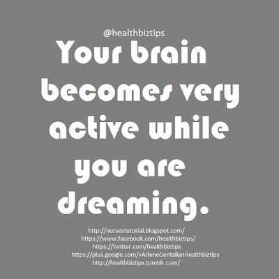 Your brain becomes very active while you are dreaming.