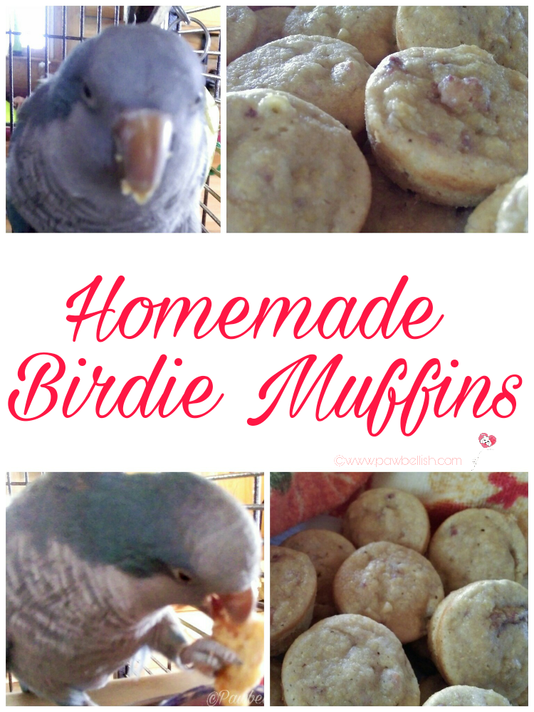 Homemade Birdie Muffins your feathered friends will enjoy snacking on.