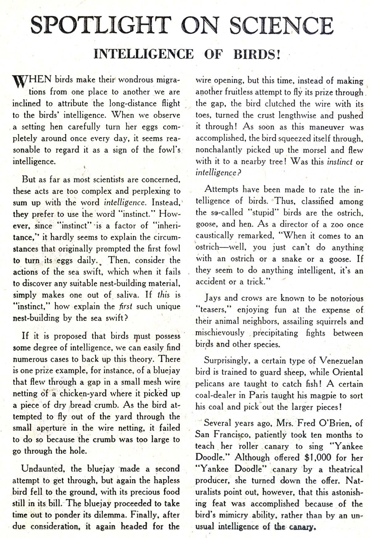 Strange Adventures (1950) issue 88 - Page 26