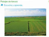http://www.primerodecarlos.com/SEGUNDO_PRIMARIA/marzo/Unidad1_3/actividades/actividades_una_una/cono/paisaje_llanura/llanura.swf