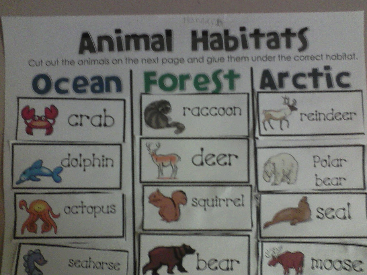 Miss. Llewellyn's Kindergarten: Animal Habitats