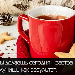 Отчет за 30.11.15 - 06.12.15: Весь в делах...