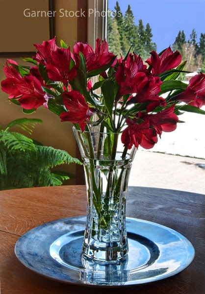 Stock And Fine Art Photos Red Freesia Lily Flower Bouquet