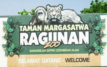 Harga Tiket Masuk Kebun Binatang Ragunan Terbaru 2017 Hutan Tropis Mini
