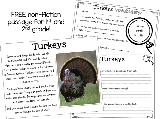 Blog Hoppin Free Nonfiction Passage About Turkeys
