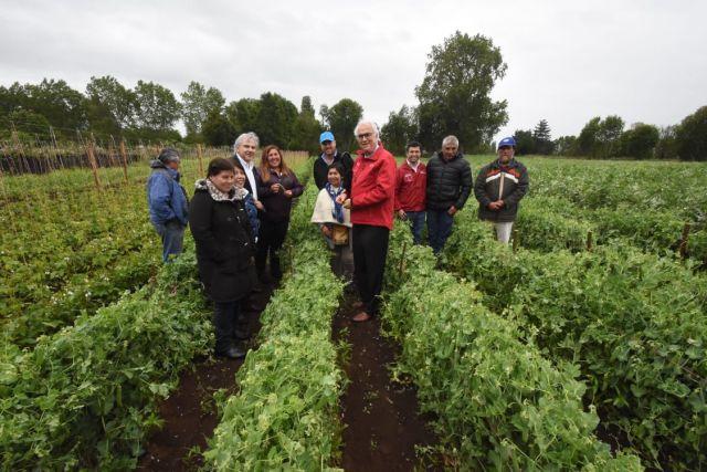 Pequeños agricultores buscan diferenciarse a través de la agrosustentabilidad