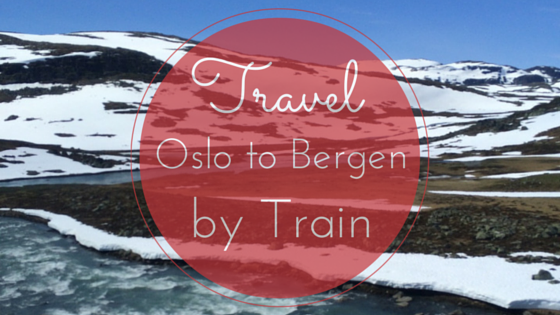 oslo bergen train norway