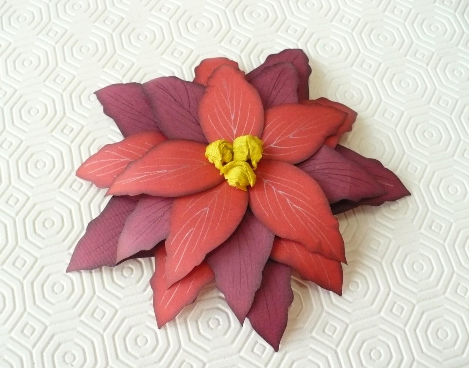 Stella Natale Di Carta.Stella Di Natale Di Carta Christmas Paper Flower Sweetbiodesign