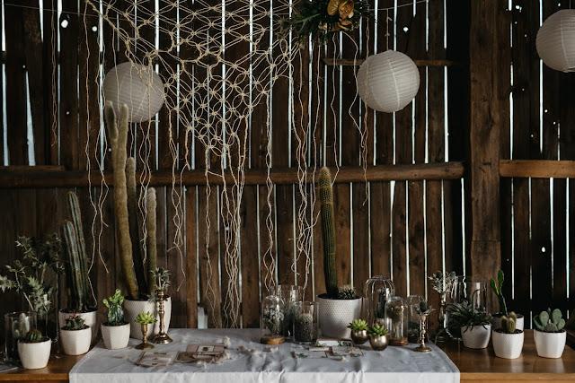 Kaktusy jako ozdoba stołów weselnych.