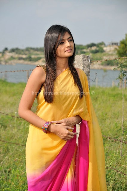 Nikitha Narayan Cute Saree Photos