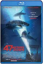 Terror a 47 Metros (2017) HD 720p Latino