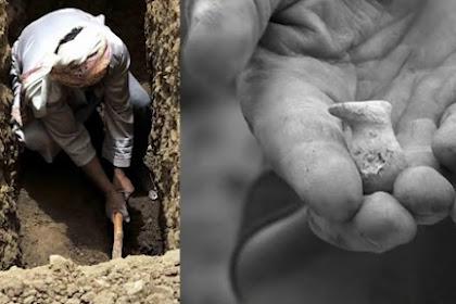 Video Ilmiah Ini Tunjukkan Keajaiban Tulang Ekor, Sabda Nabi Muhammad 100% Benar