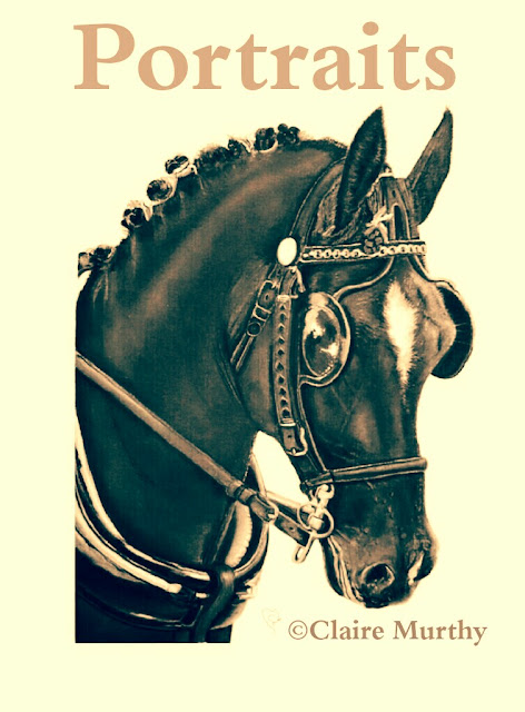 Horse drawing. Traditional pet portrait.