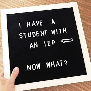 IEP organization and management