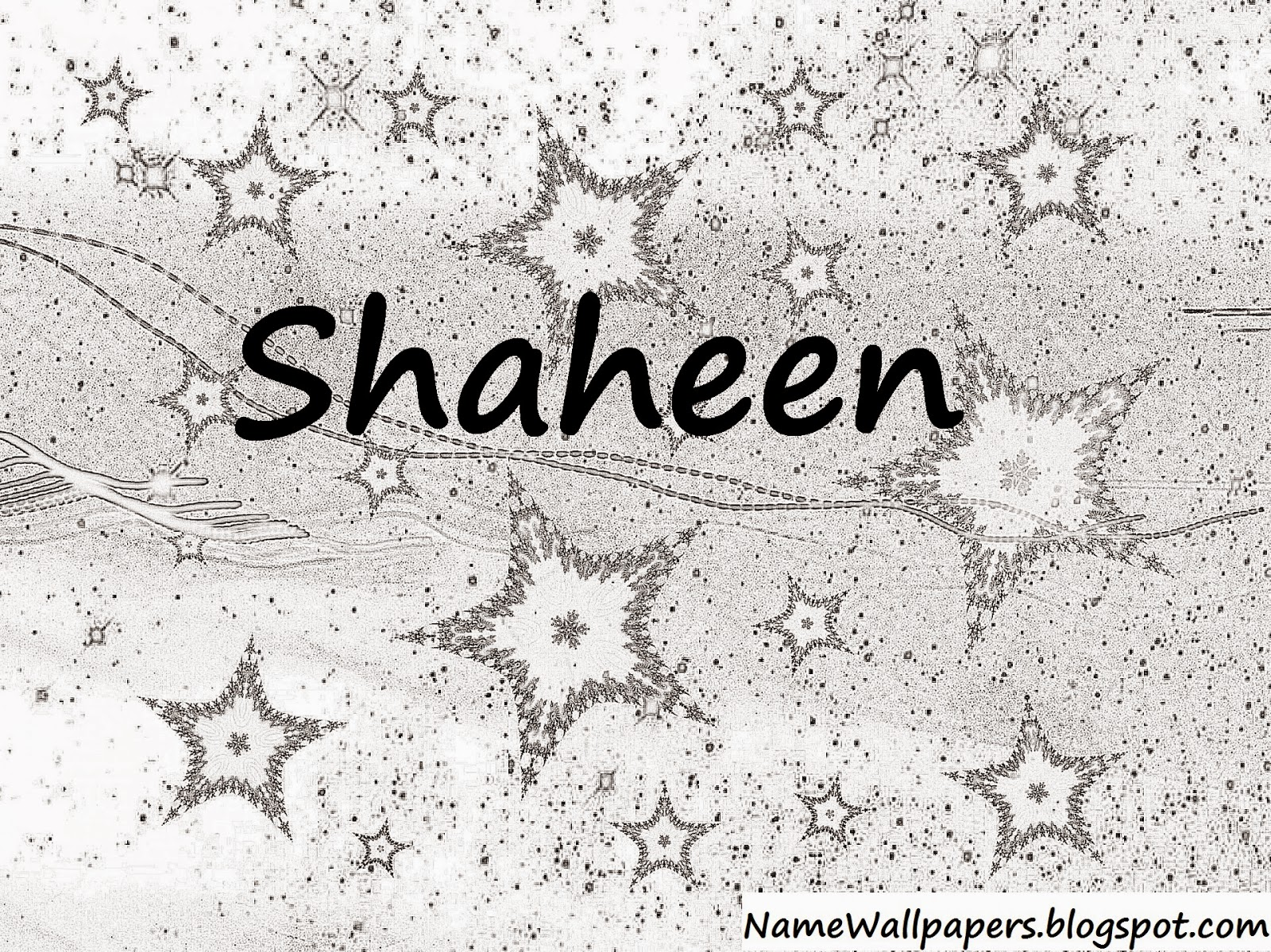 Shaheen Name Wallpapers Shaheen Name Wallpaper Urdu Name Meaning