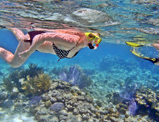 Paket Tour 2 Hari 1 Malam Plus Snorkeling ke Nusa Penida, New Price 2018