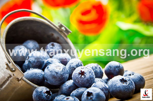 Tấm xuyên sáng in hình hoa quả