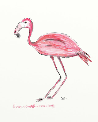Pink flamingo drawing