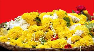 जानें क्यों प्रिय है विष्णु भगवान् को पीला रंग