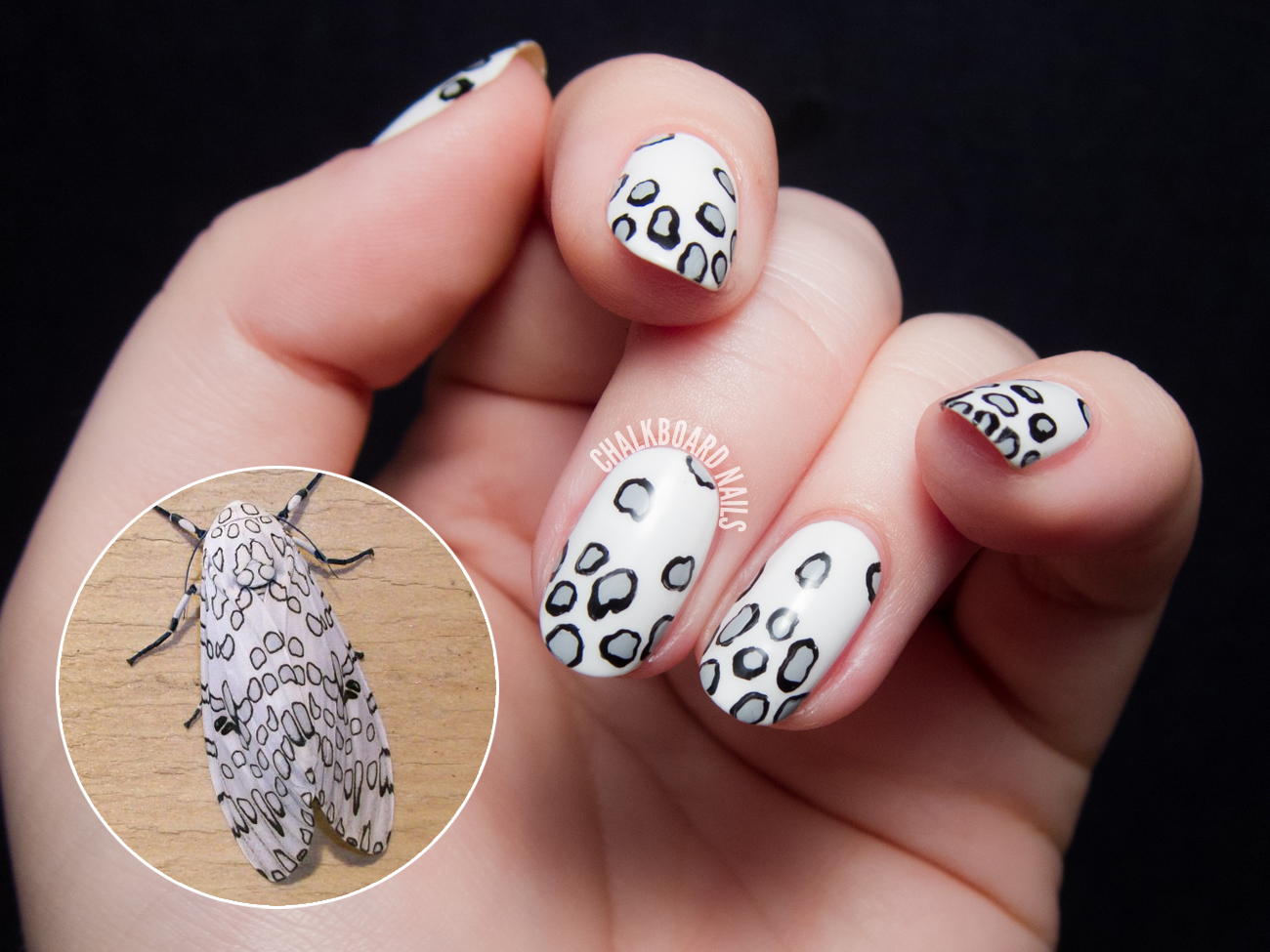 Giant Leopard Moth Inspired Nail Art | Chalkboard Nails