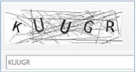 Protypers single word captcha with space
