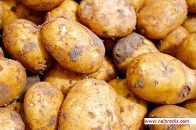 Potato - पटेटो आलू