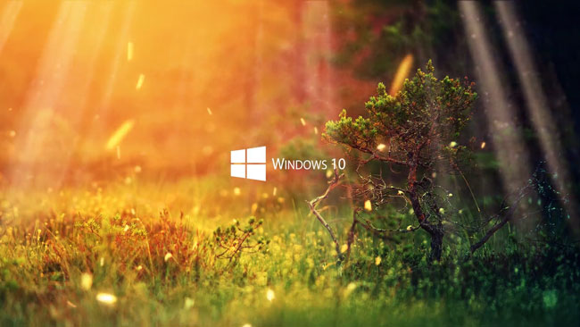 Nature Windows 10 Series Wallpape Engine