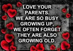 Cute And Lovely Quotes For Parents: Love your parents, we are so busy growing up, we often forget they are also growing old.