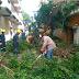 Suman 53 árboles caídos por evento de norte en Veracruz: PC