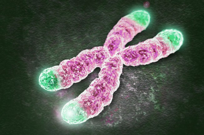Woman Gets Biologically Younger After Gene Therapy