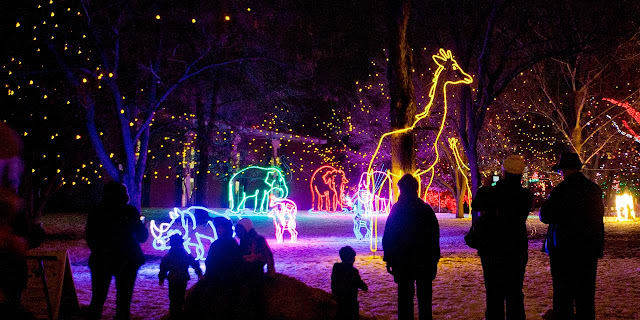People in silhouette admiring Christmas lights in the shape of animals at the Denver Zoo