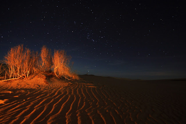 Starry night in Tabas Desert. Iran