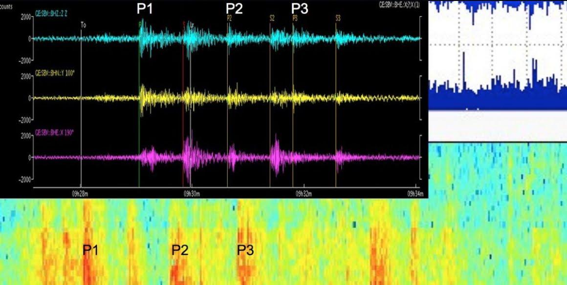 Terremoti nel Mondo: Le misteriose Onde Sismiche diffuse in tutto il pianeta l'11 Novembre.