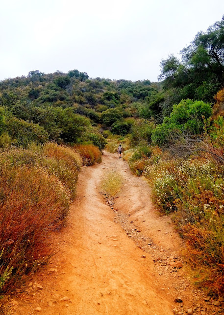 Caballero Canyon Trail Topanga State Park, Reseda Blvd, Tarzana, CA