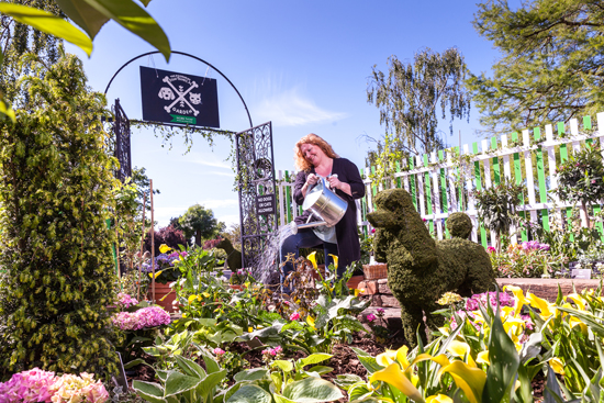 MORE TH>N and Charlie Dimmock launch a new Pet Safe Campaign to raise awareness of the issue of cats and dogs being poisoned by common household plants and flowers.