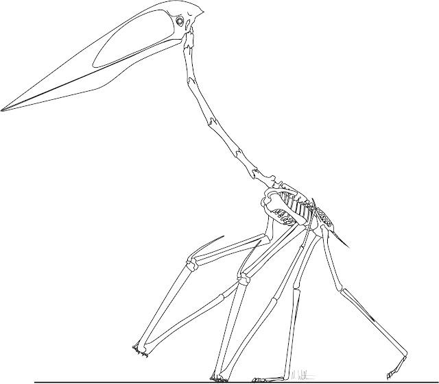Robert Squier's Illustration and Sketch Blog — | 561x640