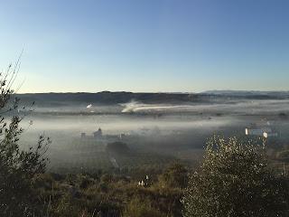 PARQUE FORESTAL DE LA MUNTANYETA D'ALZIRA