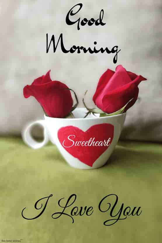 good morning sweetheart red rose