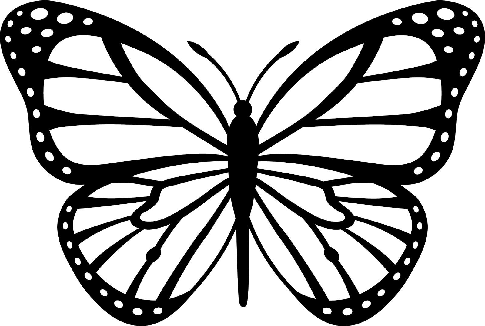 News Butterfly: Butterfly Cartoon Black And White