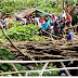 Sebuah Pohon Tumbang, Akses Menuju Wisata Srambang Terganggu