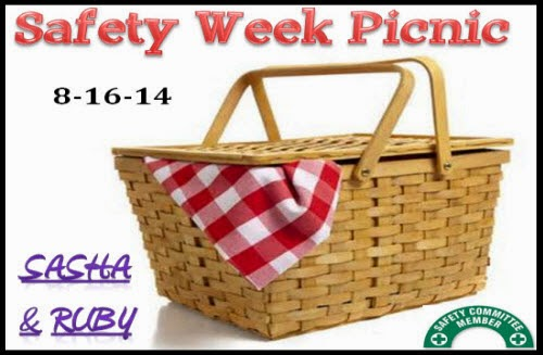 Safety Week Picnic
