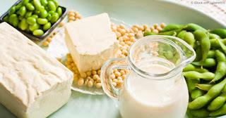 soy health benefits, soy health risks