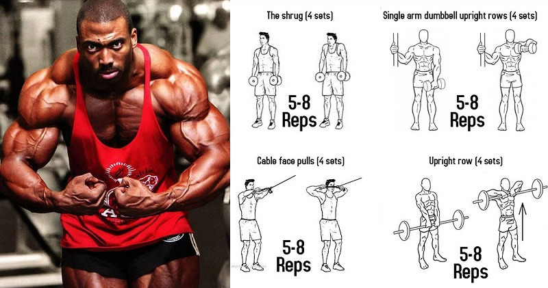 Build Huge Trapezius Muscles With New Trap Exercises - all ...