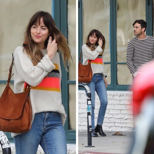 Dakota Johnson met up with Blake Lee for dinner