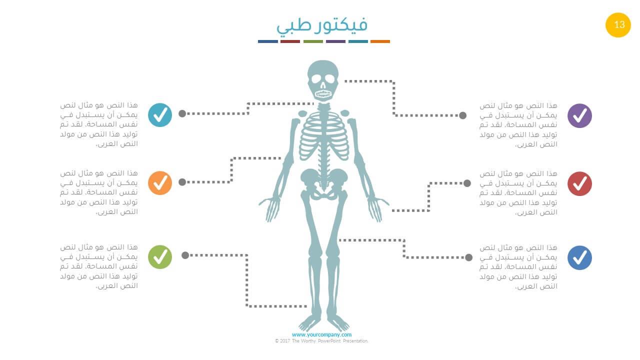 بوربوينت طبي هالهيكل العظمي للانسان