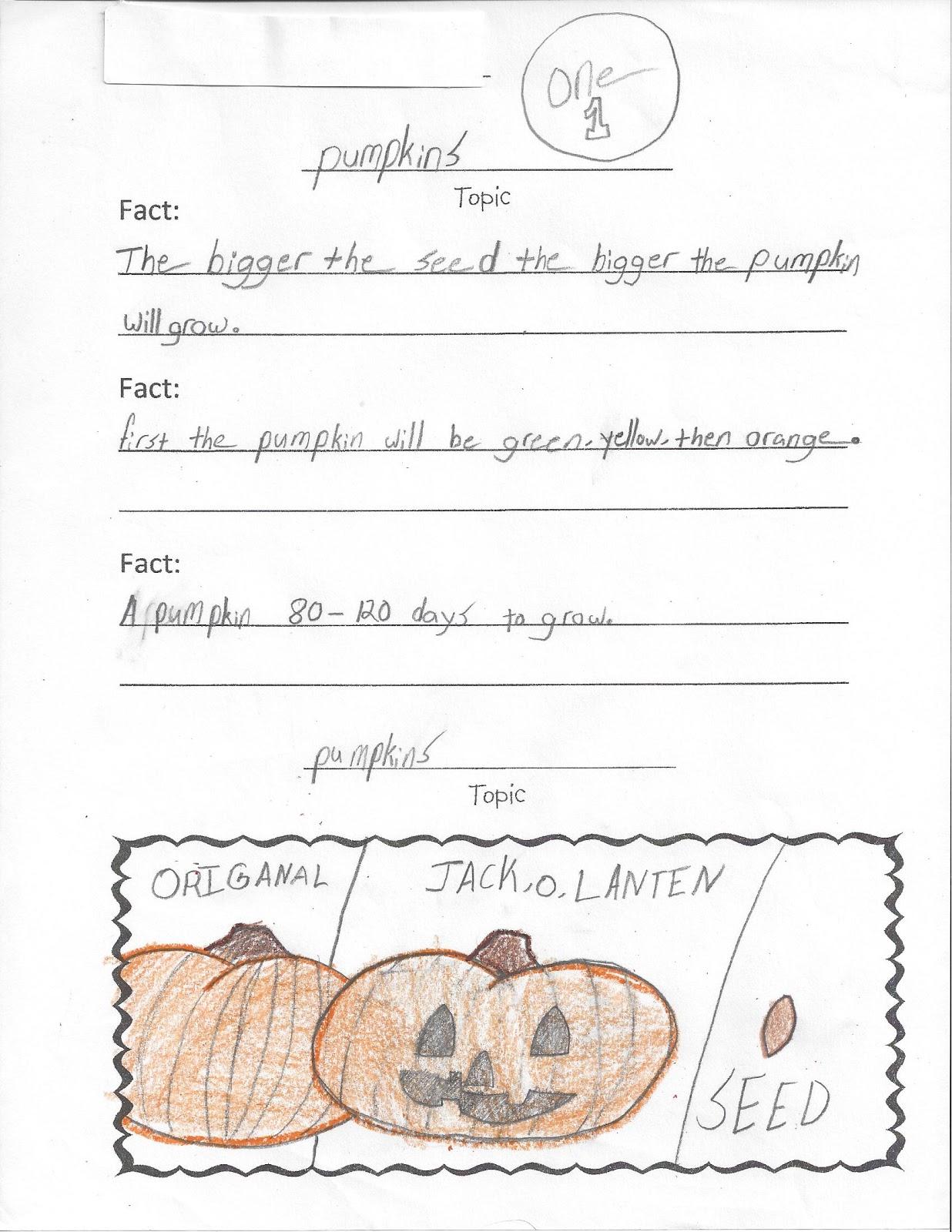 parts of a pumpkin diagram hinduism vs buddhism venn totally terrific in texas pumpkins pumkins