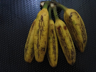 Country Banana