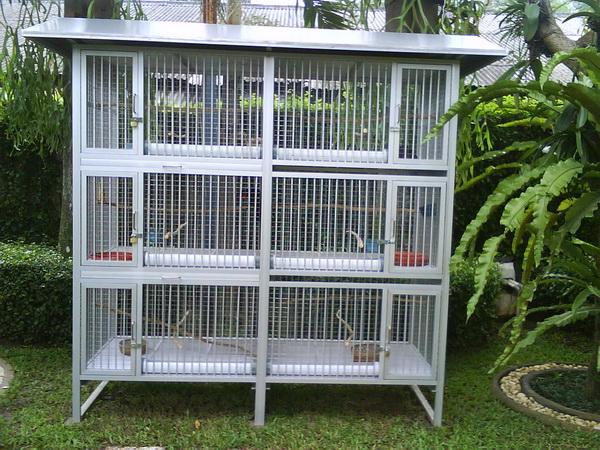 Bird Cage Design - Disain Kandang Burung Cantik