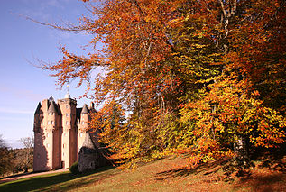 castle and autumn leaves in sunshine